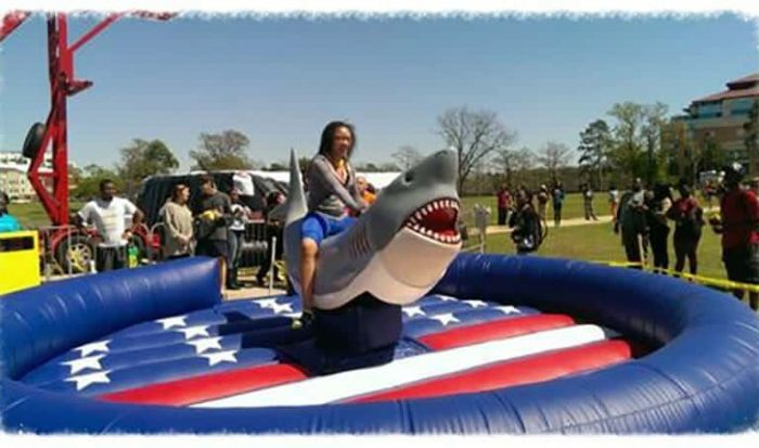Mechanical Shark Rental for NYC Events